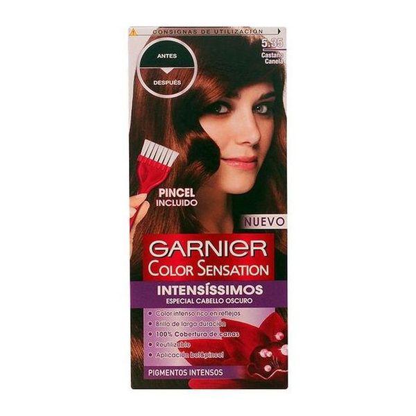 Obstojna barva Color Sensation Intensissimos Garnier