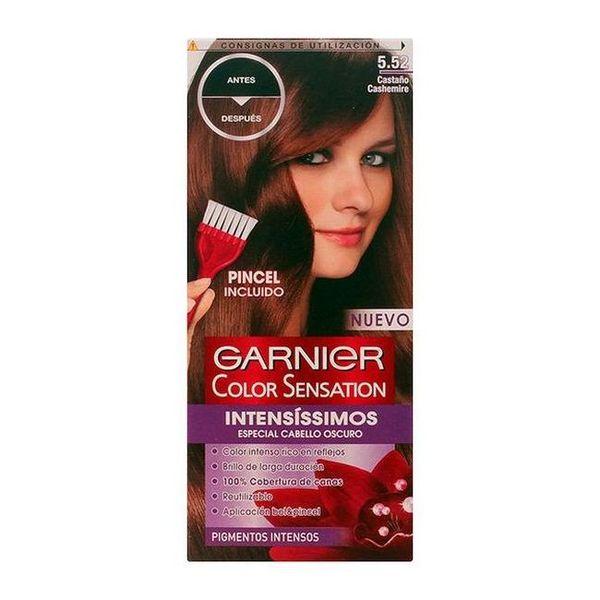Obstojna barva Color Sensation Intensissimos Garnier Kašmirjevo kostanjeva