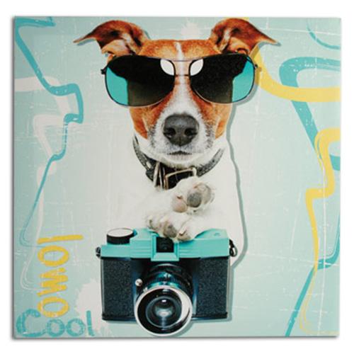 Tableau Chien Photographe 40 x 40 cm