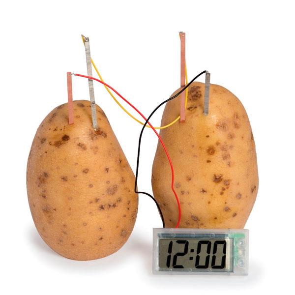 Eksperiment Ura, ki deluje na Krompir