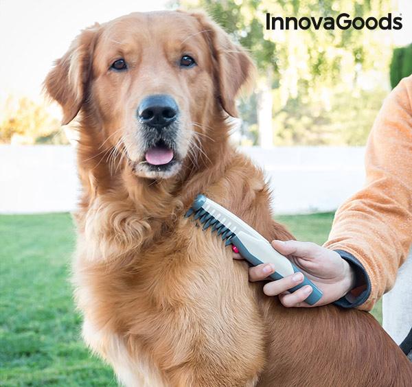 InnovaGoods Elektromos Bontófésű Kutyáknak