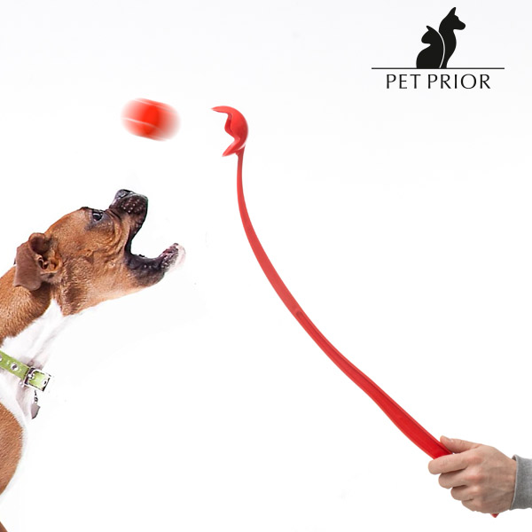Metalec žogic za Pse Pet Prior