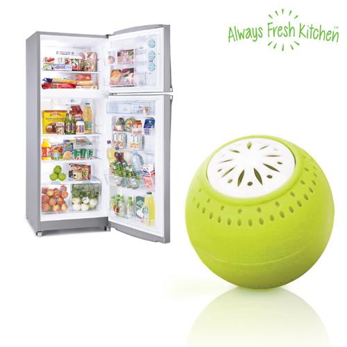 Ecobolas para Frigorifico Fresh Fridge Balls (pack de 3) D3510109