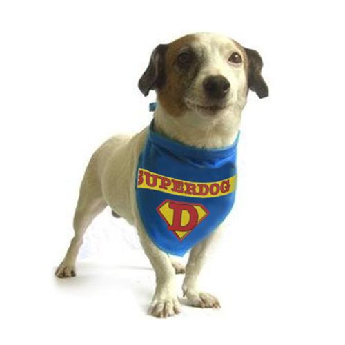 Pañuelo para Perros D4500128