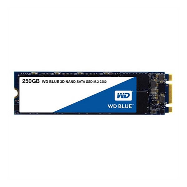 Hard Disk Western Digital WDS250G2B0B SSD 250 GB SATA III