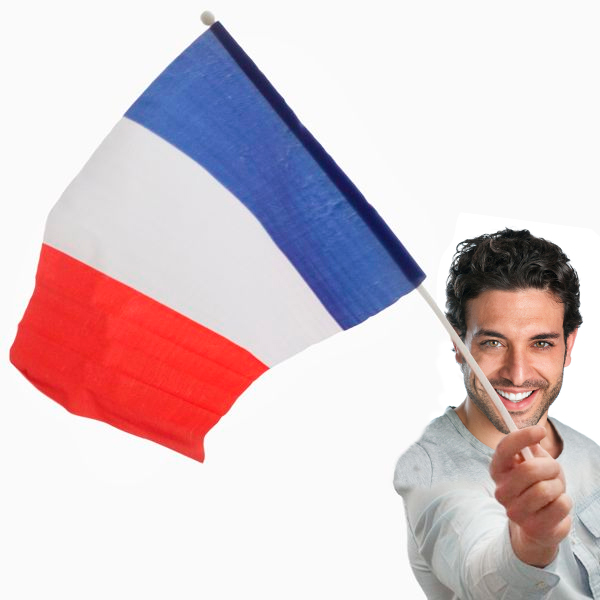 Bandiera della Francia con Asta (46 x 30 cm)