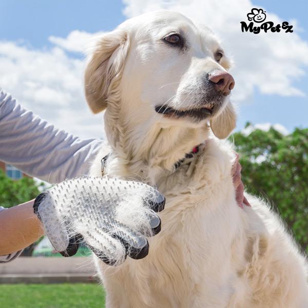 Cepillo para Mascotas Guante My Pet Petter