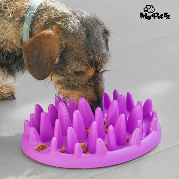 Ciotola Interattiva per Animali Domestici Slow Food Bowl My Pet Ez