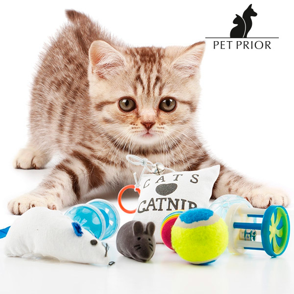 Juguetes para Gatos Pet Prior