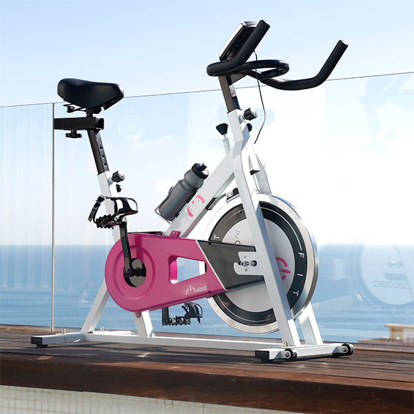 Bicicleta de Spinning Cecofit Fitness 7003 (2)