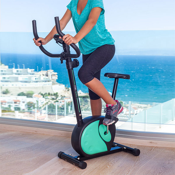 Bicicleta Estática Magnética Cecofit Fitness 7002